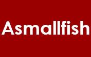 Asmallfish coupons