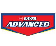Bayer Advanced coupons