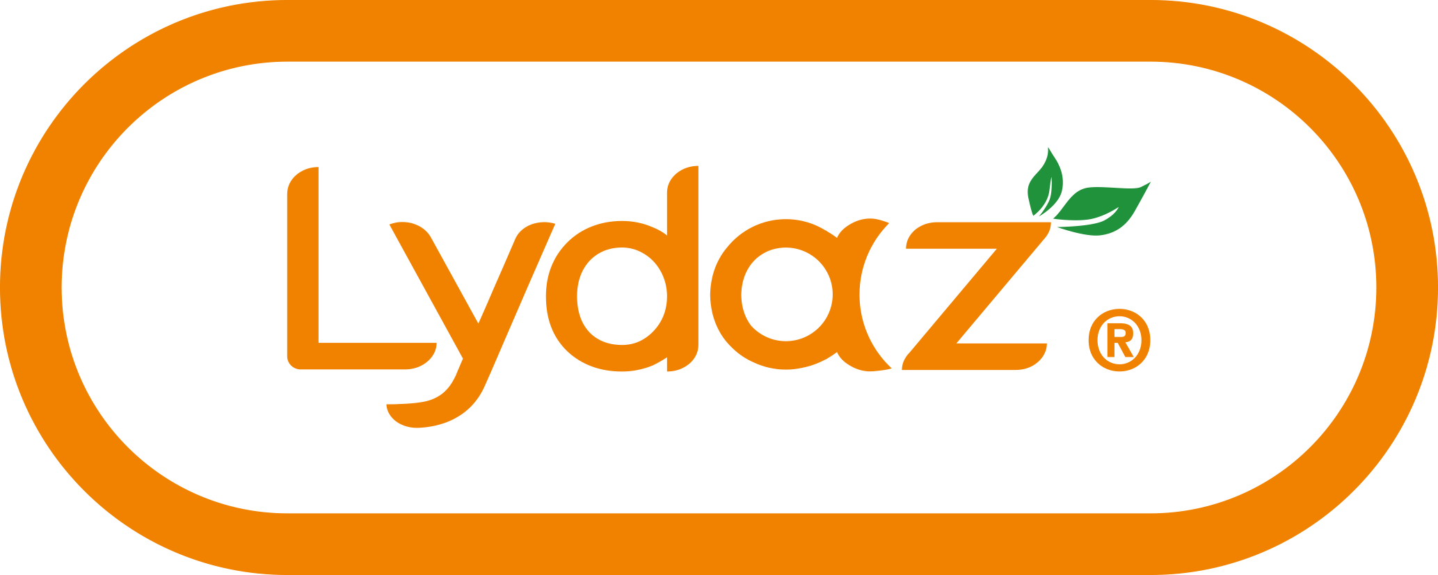 Lydaz coupons