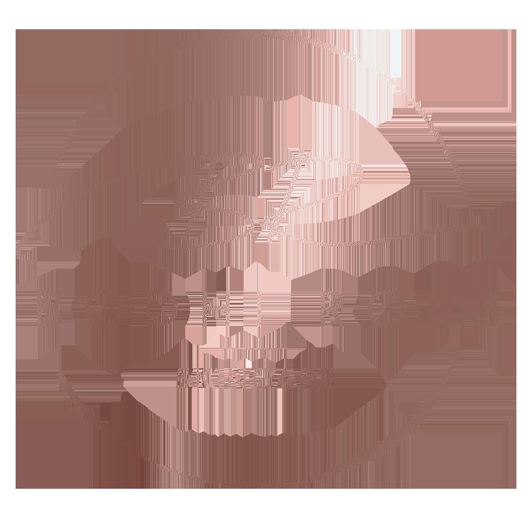 Bodhi Rose Skincare coupons