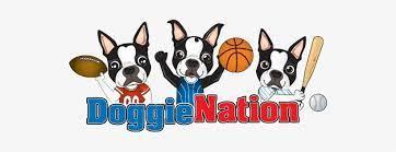Doggienation coupons