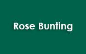 Rose Bunting coupons