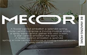 Mecor coupons
